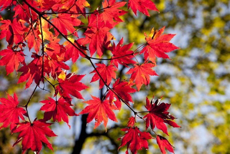 Осеннее равноденствие - особый день