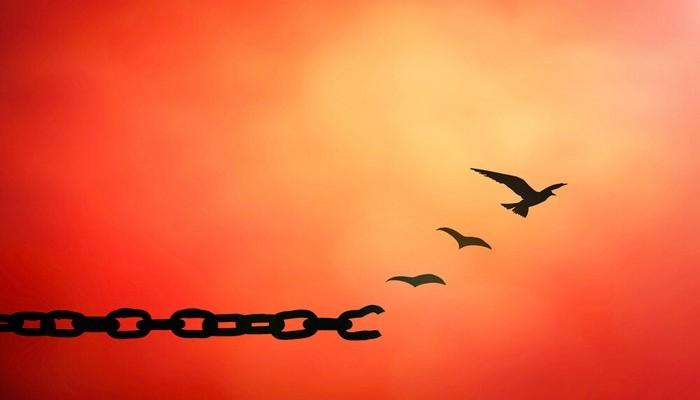 освобождение - прощение обиды